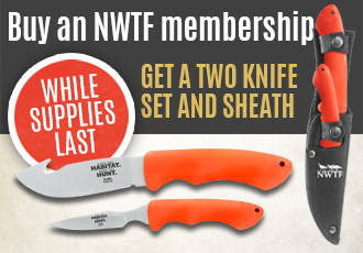 Scnwtf gun giveaway sweepstakes