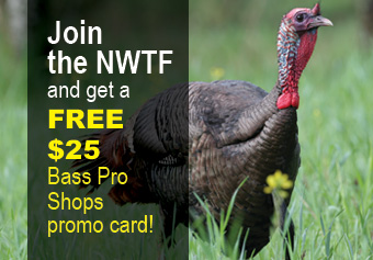 the national wild turkey federation